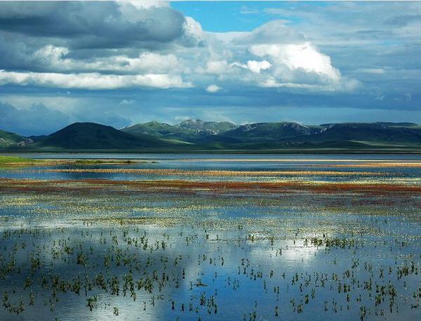 尕海一则岔自然保护区