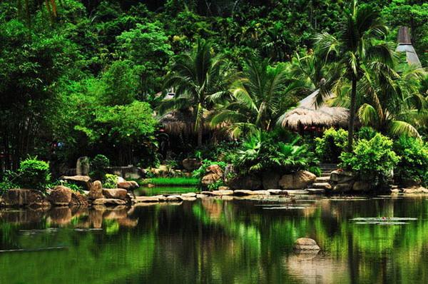 呀诺达热带雨林门票多少钱?三亚呀诺达热带雨林旅游攻略