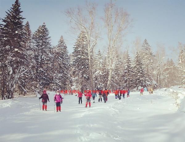 长沙到东北沈阳、梦幻雪乡、亚布力滑雪场、松花江冬捕、冰城哈尔滨双飞六日游