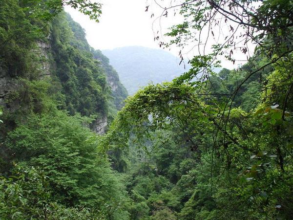 三峡猴溪好玩吗?宜昌三峡猴溪怎么样?