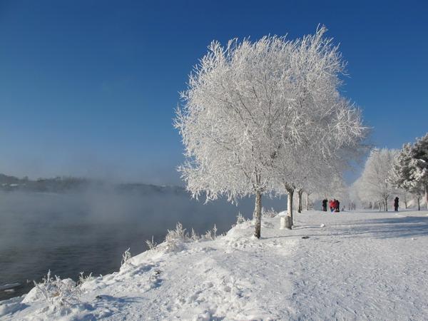 雾凇岛旅游注意事项