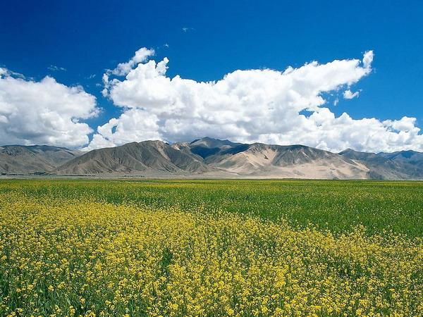 内蒙古旅游最佳路线