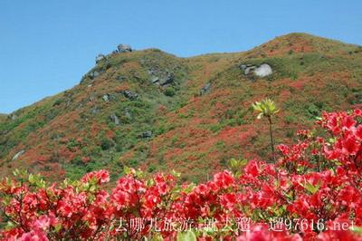 湖南浏阳大围山风景图片