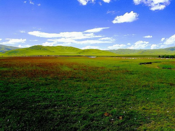 尕里台草原