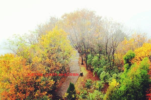 张家界红叶什么时候红?秋冬季节到张家界旅游好玩吗