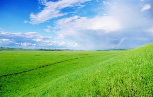 长沙到内蒙古呼伦贝尔大草原、根河湿地、驯鹿