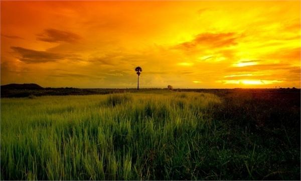 呼伦贝尔草原旅游注意事项