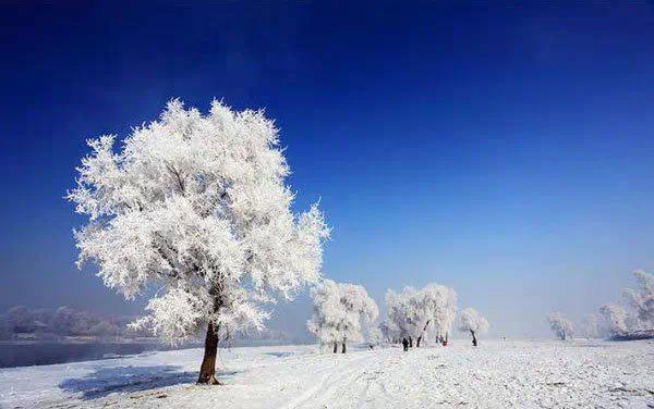 1月份国内最佳旅游目的地推荐:哈尔滨,雪乡,海螺沟,三亚