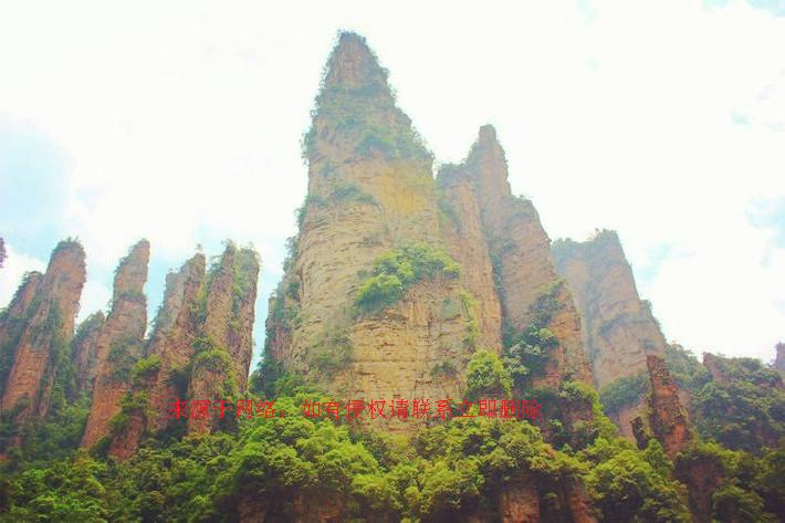 <a href=http://dinosauron.com/vjingdian_226.html>张家界国家森林公园</a>