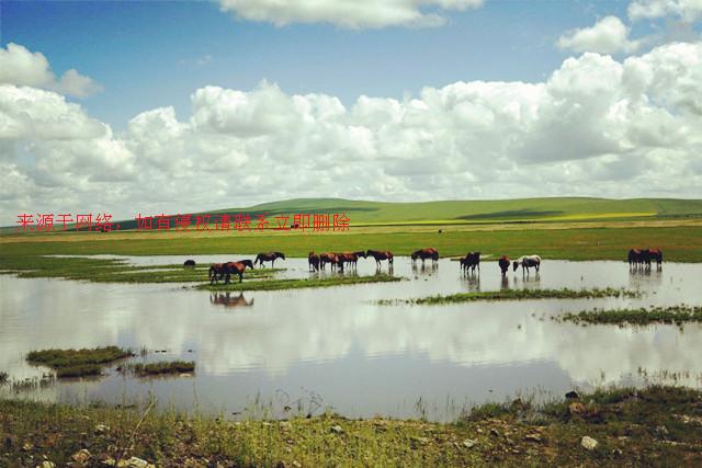 内蒙古室韦镇