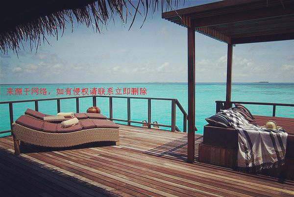 马尔代夫蓝色美人蕉