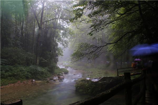 张家界核心景区武陵源(张家界国家森林公园)金鞭溪