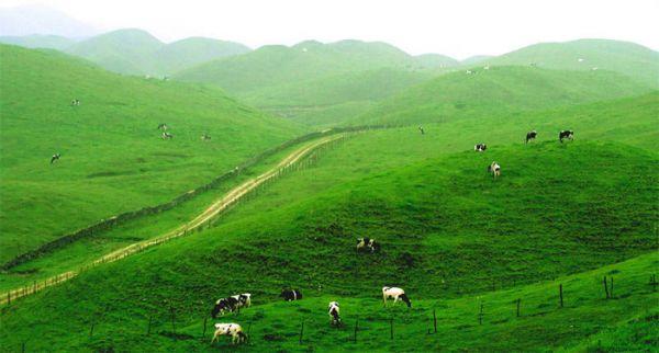 从长沙到邵阳崀山、城步南山牧场3日游纯玩旅游团队