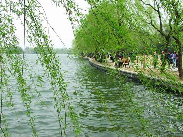 【特价之旅】长沙到南京+无锡+苏州+杭州+乌镇+上海高铁7日/单飞6日/双飞5日游