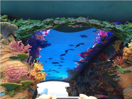 【玩转大长隆】yabo亚博体育app下载到广州长隆欢乐世界-香江野生动物园-珠海海洋王国高铁三