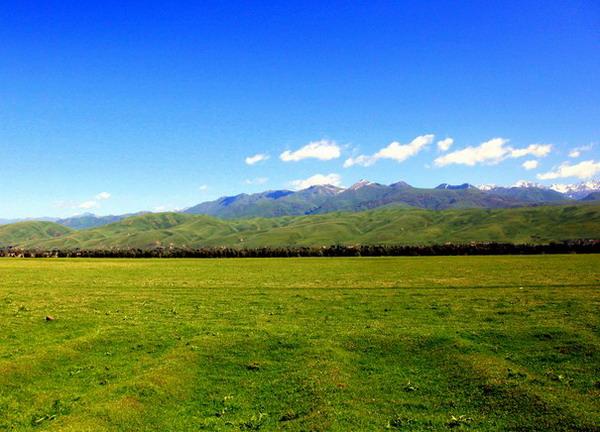 【薰衣草之旅】长沙到新疆吐鲁番-天山天池-那拉提-巴音布鲁克