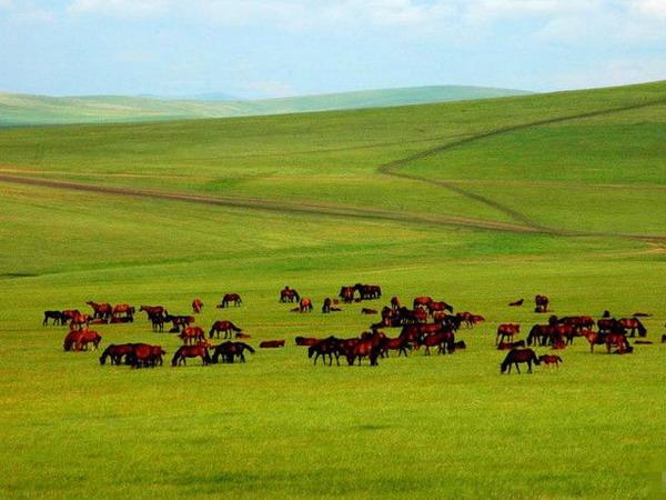 内蒙古旅游最佳时间_内蒙古旅游最佳季节