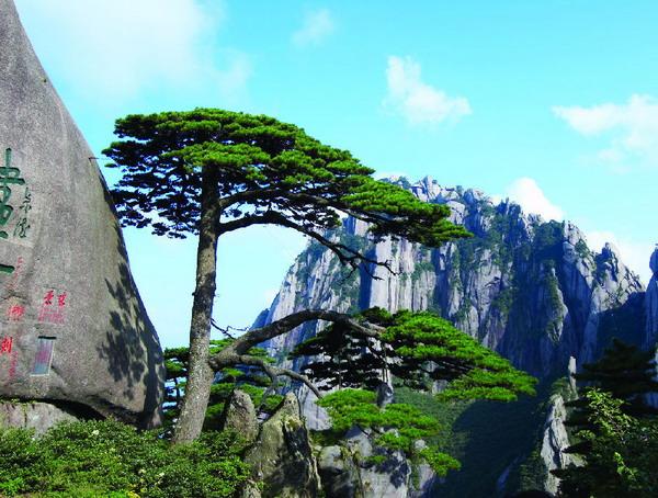 长沙到黄山旅游,长沙到黄山赏瑰丽日出双飞全景四日游旅游
