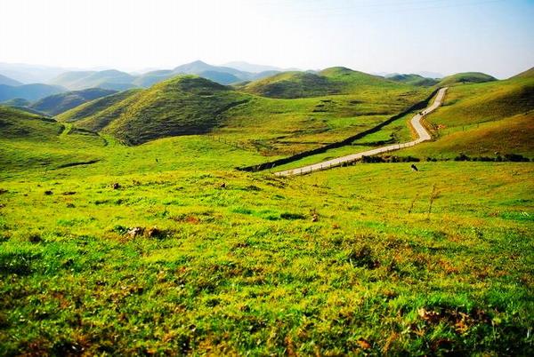 从长沙到邵阳城步南山牧场草原风情二日游