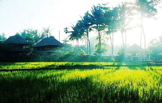 巴厘岛购物攻略_巴厘岛购物指南