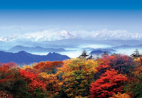 长沙到峨眉山-乐山大佛-都江堰-青城山-成都双飞五日游品质旅游