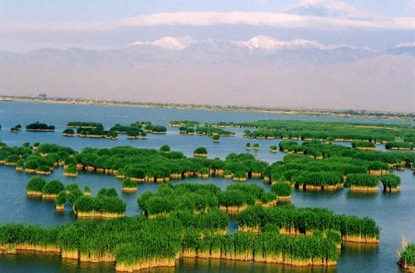 从长沙到宁夏沙坡头、西部影视城、沙湖、贺兰山岩画、水洞沟双飞5日游精华旅游