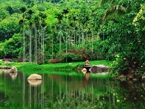 呀诺达雨林文化万博体育官网手机版登录注册区
