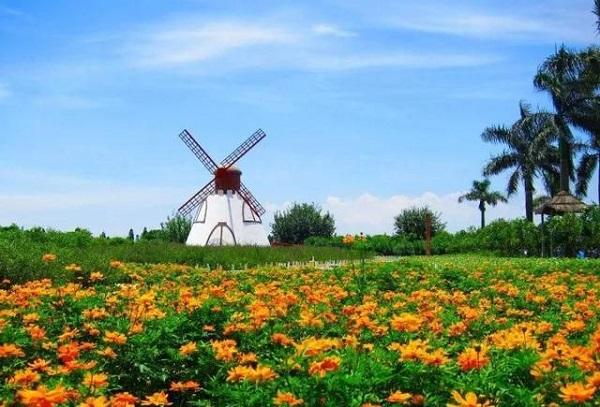 三月份去哪里旅游赏花好?3月赏花最佳地推荐