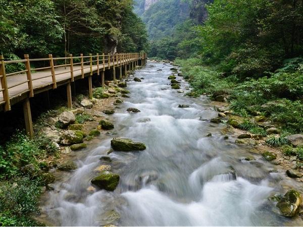 张家界大峡谷旅游景点介绍,张家界大峡谷好玩吗?怎么样