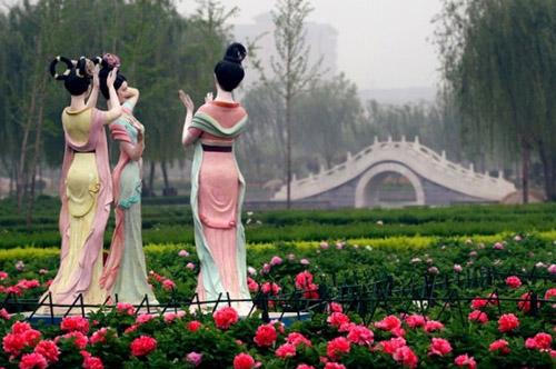 五月份适合去哪里旅游-五月众花之冠:洛阳牡丹倾城 百里杜鹃怒放