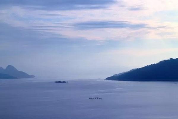 东江湖凤凰岛风景区