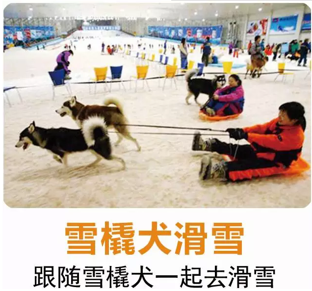 长沙首届浏阳瑞翔冰雪世界奇幻冰雪节