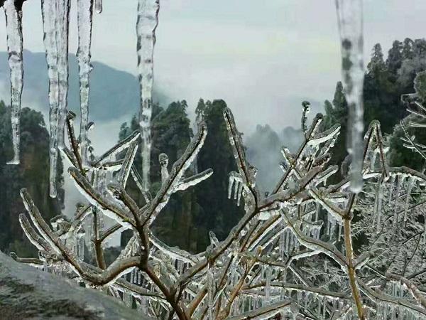 到张家界冬季旅游看冰雪童话世界