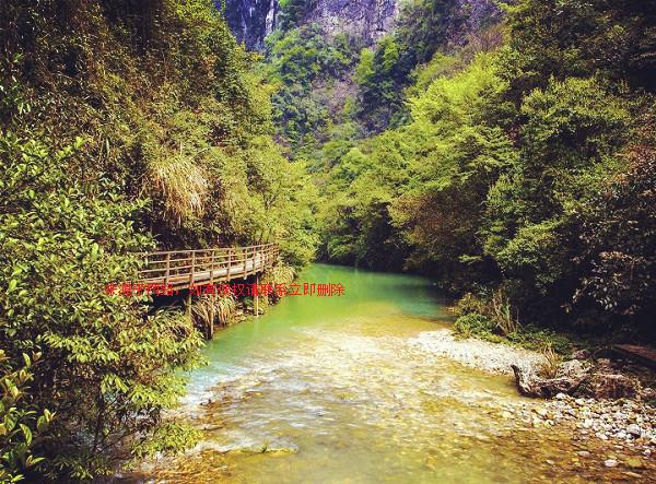 B2线:张家界国家森林公园、袁家界、天子山、大峡谷玻璃桥1晚2日游