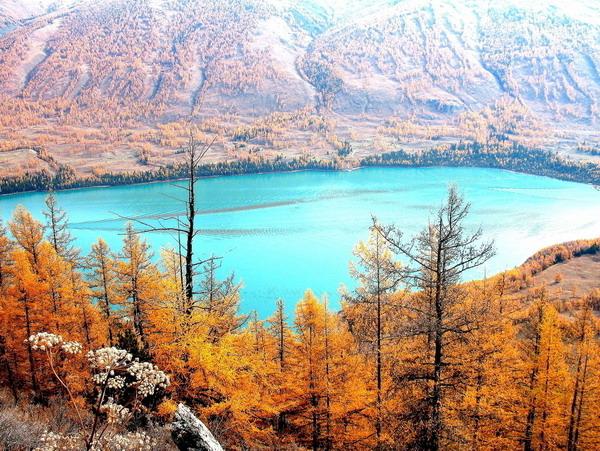 新疆喀纳斯湖图片