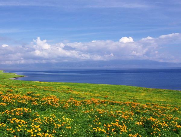 6月份适合去哪里旅游:新疆赛里木湖 迷人的草原仙境