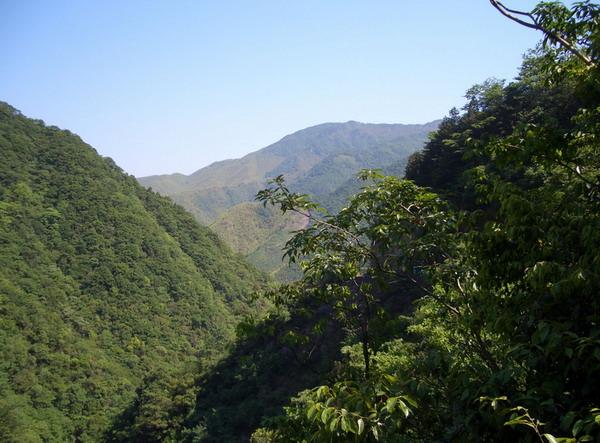 安吉龙王山