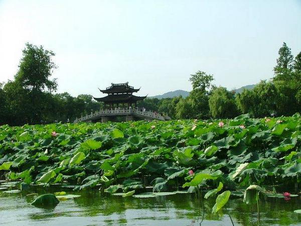 西湖十景都有哪些十景_杭州西湖十景分别是什么