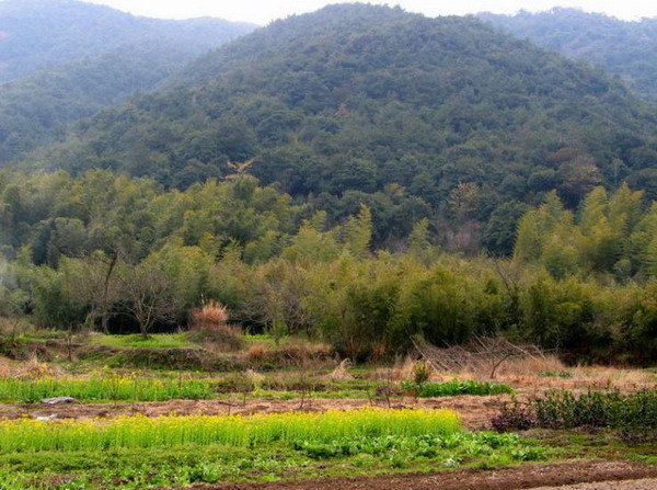 黄岩九峰公园